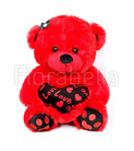Red Teddy Bear Junior